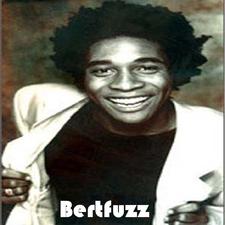 Bertfuzz