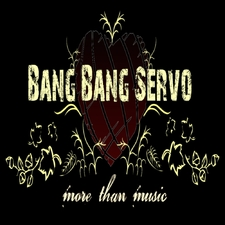 Bang Bang Servo