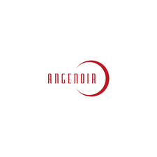 Angenoir