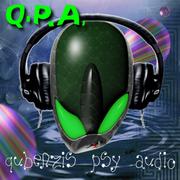 Q.P.A.