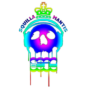 Squilla Mantis Band