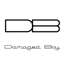 Damaged Boy