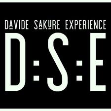 D:S:E