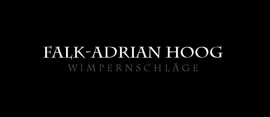 Falk-Adrian Hoog