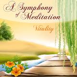 Vitality by A Symphony of Meditation mp3 download