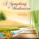 A Symphony of Meditation Vitality