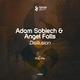 Adam Sobiech & Angel Falls - Disillusion