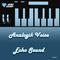 Echo Sound by Analogik Voice mp3 downloads
