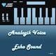 Analogik Voice Echo Sound