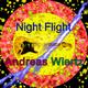Andreas Wiertz - Night Flight