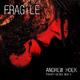 Andrew Hoek Fragile