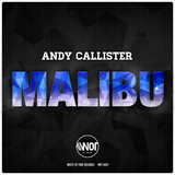 Malibu by Andy Callister mp3 download