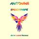 Antoninii - Endorphine