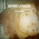 Antonio Lapunzina Fiori nel cemento