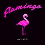 Flamingo by Aron Scott mp3 download