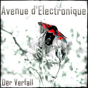 Avenue d'Electronique - Der Verfall (shilf-music)