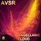 Avsr Magellanic Cloud