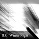 B.G. Winter Night