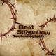 Beat Stroganow Technologisch