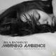 Bela Banhegyi - Morning Ambience