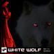 Berny Medina White Wolf