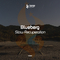 Slow Recuperation by Blueberg mp3 downloads