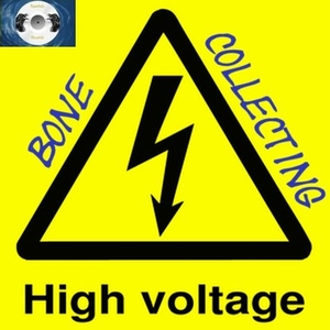 Bonecollecting - High Voltage (Ravenaic-Records)