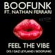 Boofunk ft. Nathan Ferrari Feel the Vibe (Remixes)