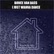 Bruce van Bass I Just Wanna Dance
