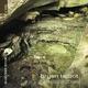Bryan Talbot - Two Steps Down