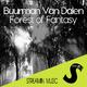 Buurman van Dalen Forest of Fantasy