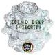 Ccino Deep Integrity