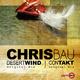 Chris Bau Desert Wind