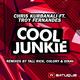 Chris Kurbanali feat. Troy Fernandes Cool Junkie