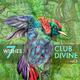 Club Divine Seven Wishes, Vol. 3