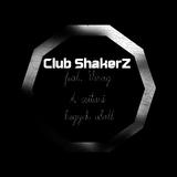 A csitari hegyek alatt by Club ShakerZ feat. Virag mp3 download