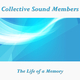 Collective Sound Members The Life of a Memory