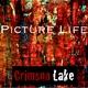 Crimson Lake Picture Life