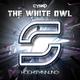 Cysko The White Owl