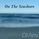 DJ Any On the Seashore