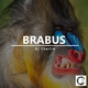 DJ Charlie Brabus