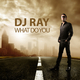 DJ  Ray What Do You