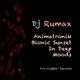 DJ Rumax - Animatronik