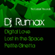 DJ Rumax Digital Love