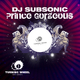 DJ Subsonic Prince Gorgeous