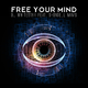 DJ Whitestar feat. Shondell Mims Free Your Mind