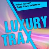 Sweet Feeling by Daft Steve & Lekstone mp3 download