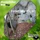 Damiandebass Wild Boys(Forest Mix 432 Hz)