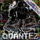 Dark Maestro Quantez