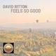 David Bitton Feels so Good